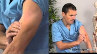 Cuádruple músculo estirado Cómo un rehabilitar