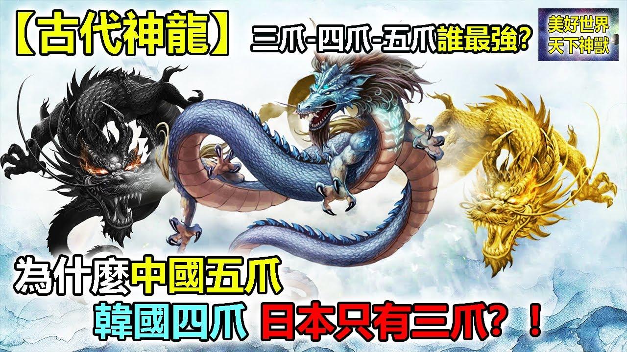 【古代神龍】三爪 四爪 五爪誰最強?為什麼中國五爪,韓國四爪,日本只有三爪!!