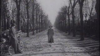 映画『第三の男』第ニ次大戦後のウィーンを舞台に、謎の事故死を遂げた友人の死の真相を探る作家の姿を描き、映画の持つ芸術性と娯楽性が見事に融合した作品。