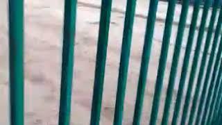 Дольщики Стройинвестпроекта: охрана спит, стройка в Бердске пуста