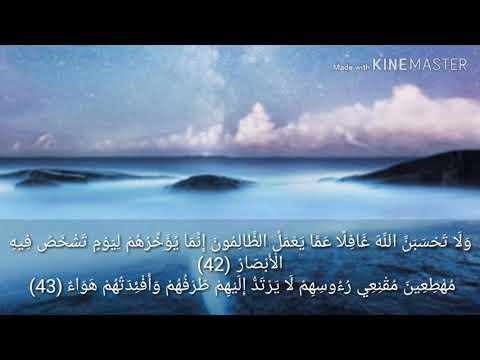 ابداع اسلام صبحي في تلاوة ولا تحسبن الله غافلا عما يعمل الظالمون سورة ابراهيم Youtube