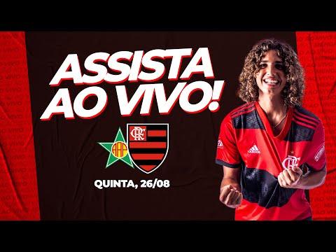 Portuguesa x Flamengo