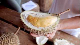 Travel Malaysia - Eating Durian In Penang
