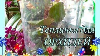 Тепличка для орхидеи/ ОРХИДЕЯ без Субстрата(This video is about Тепличка для орхидеи В этом видео я подробно расскажу как сделать тепличку для орхидей , что..., 2016-04-11T16:58:18.000Z)