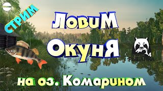 РУССКАЯ РЫБАЛКА 4 RUSSIAN FISHING 4 СТРИМ ТОЧКИ НА НОВОМ ОЗЕРЕ КОМАРИНОМ ОКУНЬ