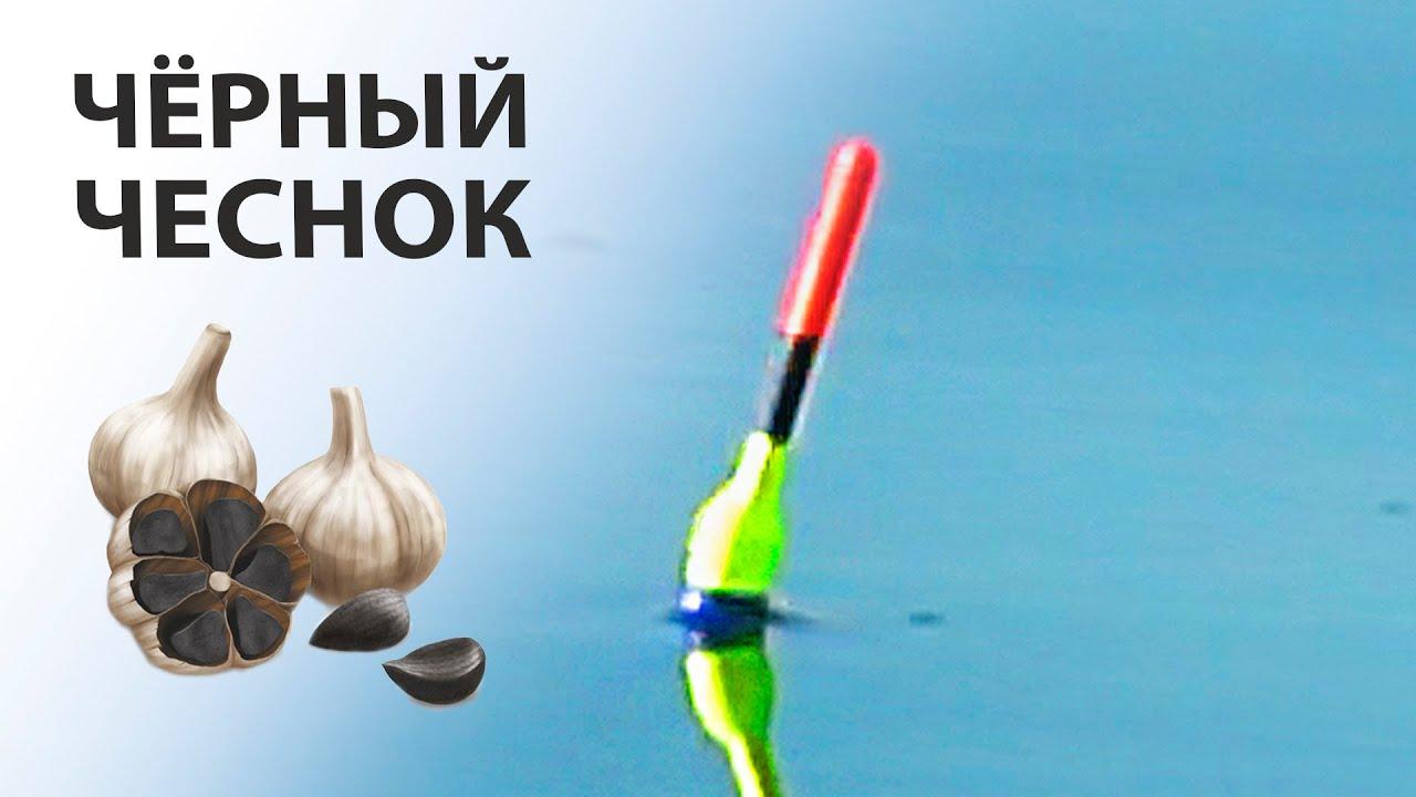 Ловля КАРПА и КАРАСЯ на поплавок! ЧЁРНЫЙ ЧЕСНОК собрал всю рыбу с реки!