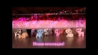 Маджики. Любимые собачки + Раскраски(Маджики раскраски и 2 альбома для наклеек -- это дополнение к полюбившимся всем детям коллекциям игрушек..., 2013-09-12T10:14:33.000Z)