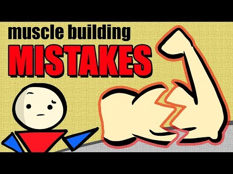 3 Reasons You&39;re Not Building MUSCLE