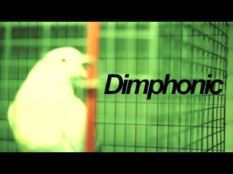 Dimphonic – High School Nightmare