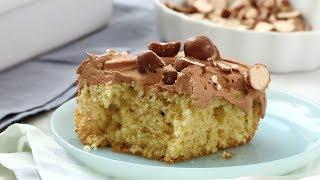 Vanilla Sheet Cake with Malted-Chocolate Frosting - Martha Stewart