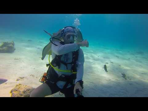 Scuba Diving Grand Cayman - Stingray City - May 2017