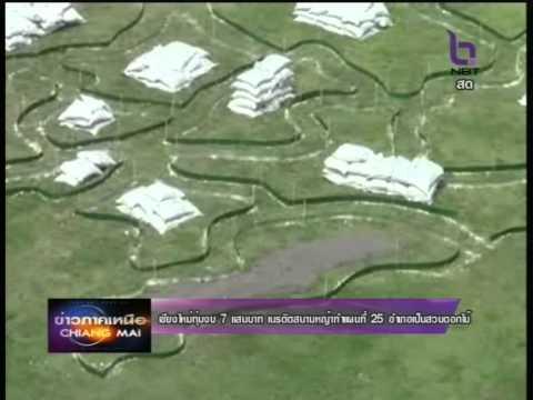 เชียงใหม่ทุ่มงบ 7 แสนบาท เนรมิตสนามหญ้าทำแผนที่ 25 อำเภอเป็นสวนดอกไม้