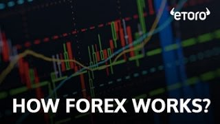 How FOREX Works? How Leverage Works?