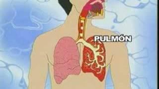 Los modos extremos a de dejar fumar