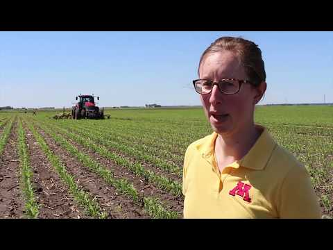 Bazooka Farmstar | MN Sidedress Project