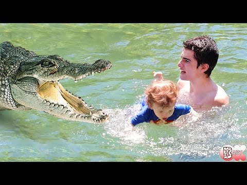 SWIMMING IN ALLIGATOR INFESTED WATERS!