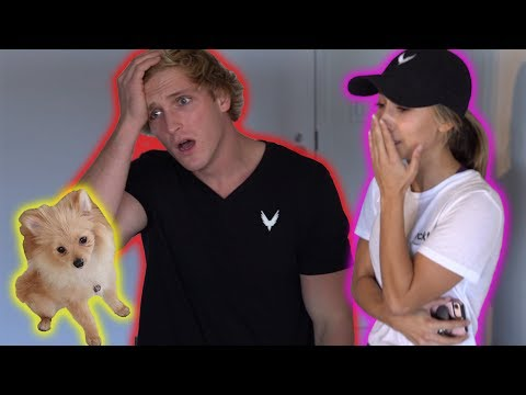 Thumbnail: SHE ACTUALLY LOST MY DOG!