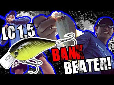 LC 1.5 / Bank Beater!! / Takahiro Omori / Lake Conroe / Fall