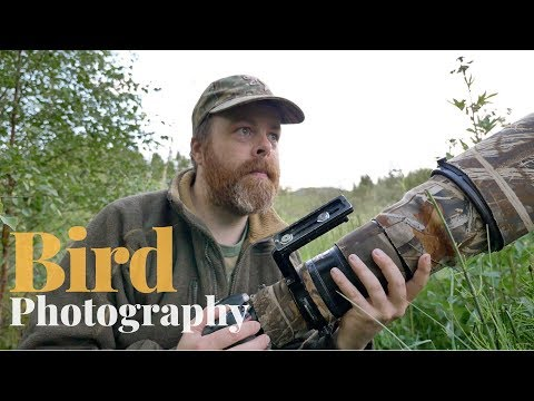 How to find wildlife to photograph | BIRD PHOTOGRAPHY – tips and trick