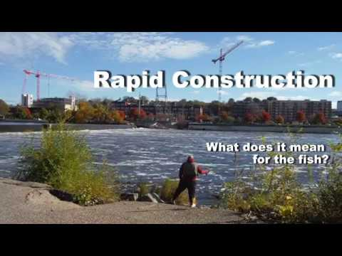 rapid-construction---grand-rapids-whitewater-and-the-fish