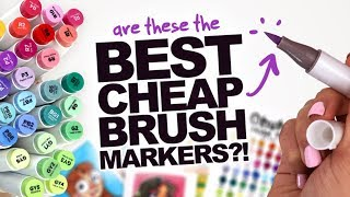 BEST CHEAP BRUSH-MARKERS?! | Ohuhu Dual-Tip Brush/Chisel Tip Markers - 48 set