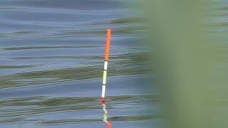 Рыбалка с лодки на поплавок. My fishing