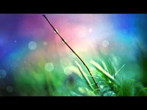 Nick Morris Ft. Cera - Final Wish