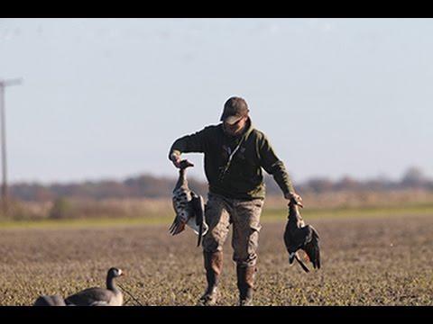 Arkansas Wildlife - S1.E8, Specklebelly Goose Hunting and Recipe