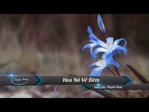 Hoa Nở Về Đêm Karaoke - Giọng Nữ | Beat Chuẩn .karaoke one vn