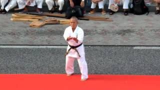 Sanseiryu Uechi Ryu Karate. 三十六型. 上地流 空手