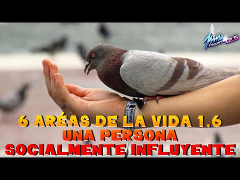 6 ARÉAS DE LA VIDA 1 6 UNA PERSONA SOCIALMENTE INFLUYENTE