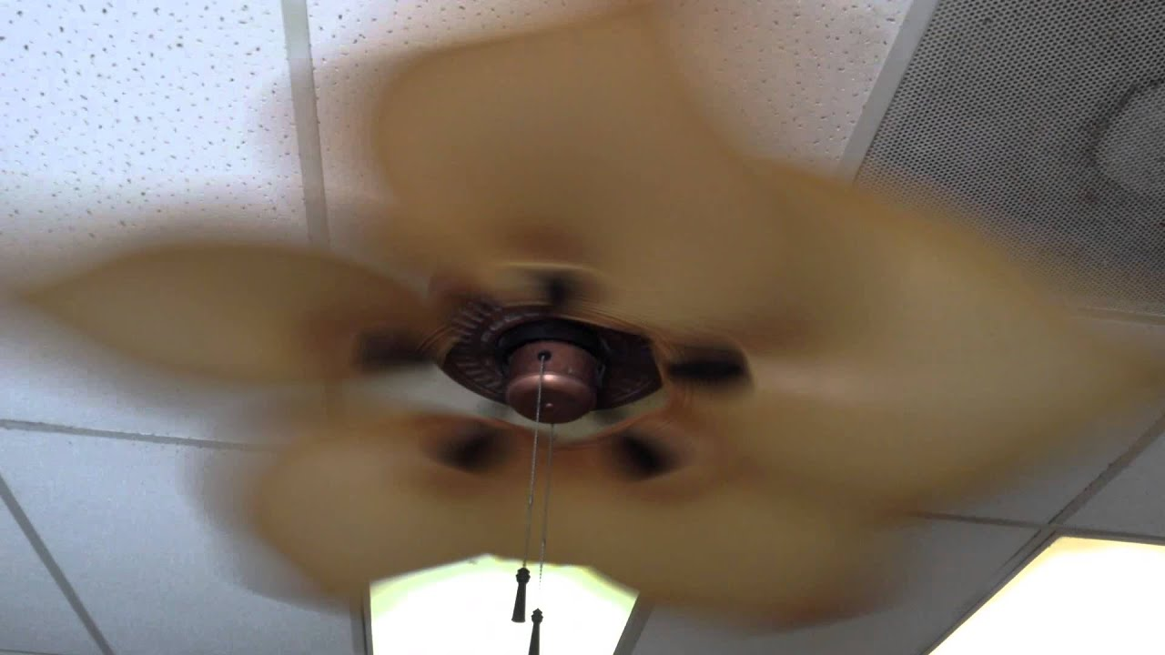 52 Hampton Bay Gazebo Ceiling Fans With Tropical Breeze Blades
