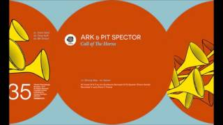 Ark & Pit Spector - Wrong Way / Original Mix [Thema]