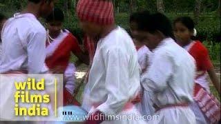 Jhumur dance - Assam