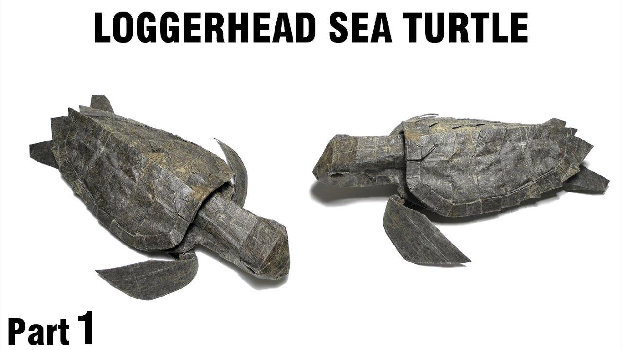 Origami Loggerhead Sea Turtle Tutorial Satoshi Kamiya Part 1 Fearsome Ancient Dragon Designed By No Online Diagrams Unechte Meeresschildkrte