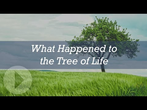 What Happened to the Tree of Life - Paul Nelson