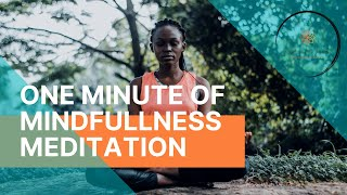 Meditation, one minute of guided mindfulness meditation for you and the student of my class