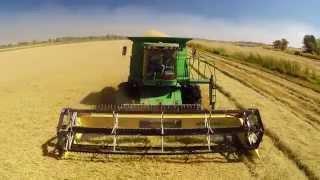 California Rice Harvest