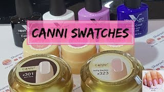 CANNI Gel Swatches and Review- Gel Paints, Builder Gel, Venalisa Gel Polish