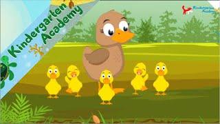 ????5 little ducks???? | Kindergarten Academy - Nursery Rhymes - COUNT TO FIVE kids song