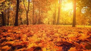 Autumn Days – Primary School Hymn