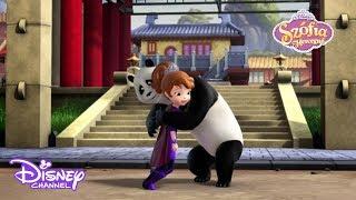 Szófia és a panda I Szófia hercegnő I Disney Csatorna