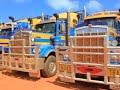 ROAD TRAINS OF AUSTRALIA BROOME 2017