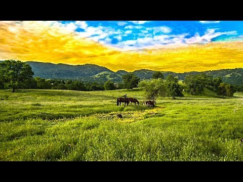 """""""Gem Of The Sierra's"""" 