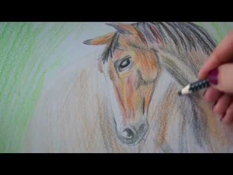Wie zeichnet man ein Pferd I Pferde malen I рисовать лошадь КОНЯ I 画马畫