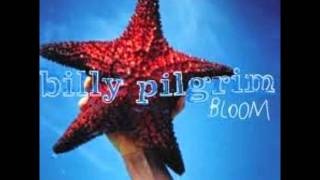 Watch Billy Pilgrim Sweet Louisiana Sound video