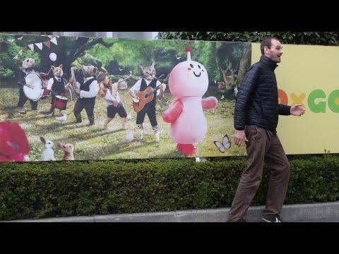 Kumamoto and Miyazaki, Japan | November 15 - 17, 2014 (Part 2 of 2)