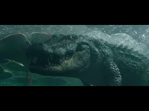 Crawl 2019 1080p All Deaths Action & Scary Aligator Scenes Mass Movie Mash Up Under 5 Minutes