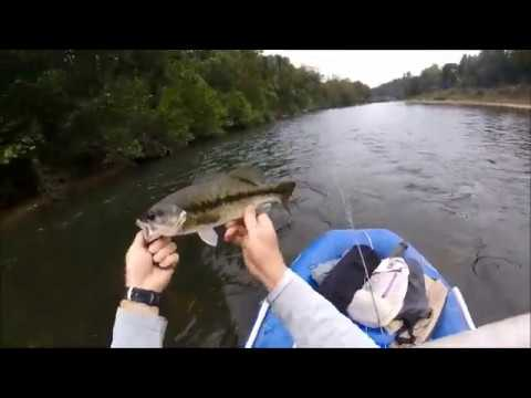 Fly Fishing The James River In Missouri