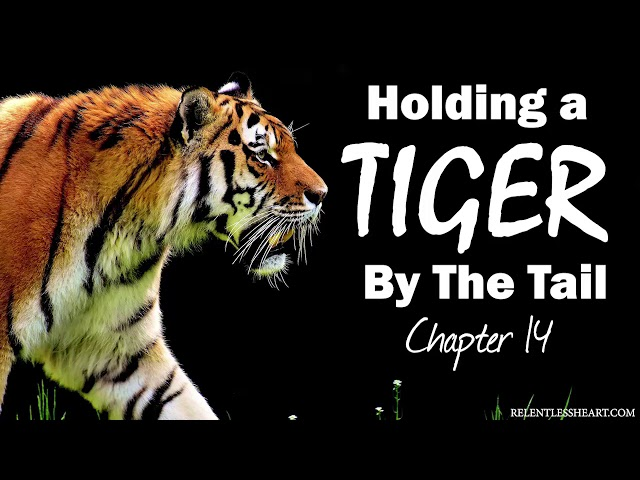 Ch. 14 Holding a Tiger By the Tail - Astonishing Grace to the Chief of All Fools